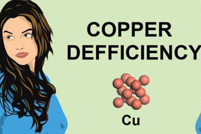 THE ROLE OF COPPER IN THE APPEARANCE OF GREY HAIR